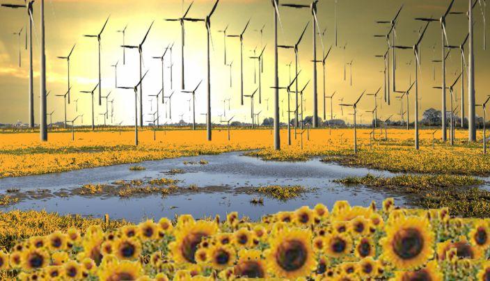 pauline van den broeke energielandschap(concentratie)