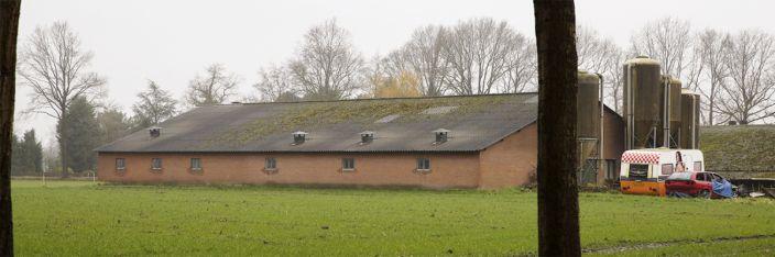 Pauline van den Broeke agrarisch vastgoed 1
